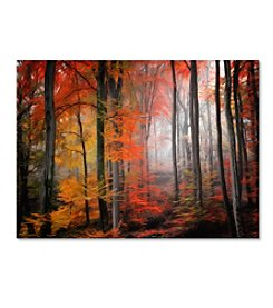 Trademark Fine Art Philippe Sainte-Laudy 'Wildly Red' Canvas Art