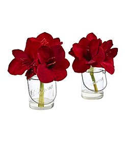 Nearly Natural® Set of 2 Amaryllis in Glass Jar