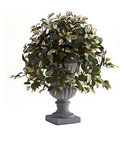Nearly Natural® Hoya with Decorative Urn