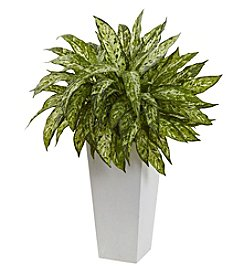 Nearly Natural® Aglaonema with Decorative Planter