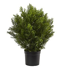 Nearly Natural® 2' Cedar Bush