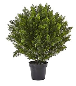 Nearly Natural® 3' Cedar Bush