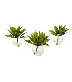 Nearly Natural® Set of 3 Agave Succulent with Vase