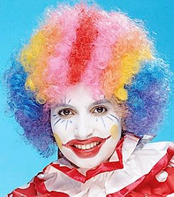 Economy Rainbow Clown Wig