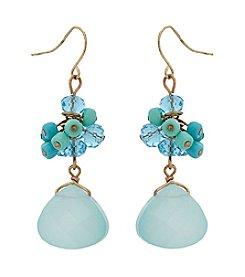 Erica Lyons® Double Drop Pierced Earrings