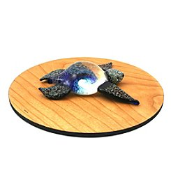 Aspiring Artists of the Earth Glass Turtle Paperweight