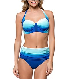 Bleu Rod Beattie D Cup Ombre Bikini Top and Hipster Bottoms