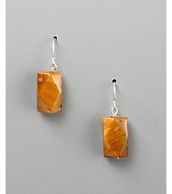 Women's Genuine Stone Tiger's-Eye Fish Hook Earrings