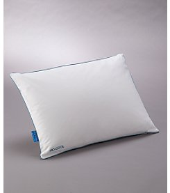 SleepBetter® Iso-Cool™ Traditional Shape Memory Foam Pillow