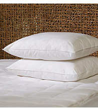 Comfort Touch™ 2-Pack Feather Pillows
