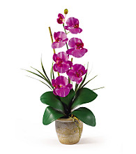 Nearly Natural® Phalaenopsis Silk Flower Arrangement