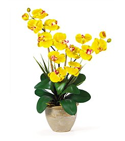 Nearly Natural® Double Stem Phalaenopsis Silk Flower Arrangement