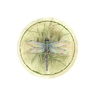 Thirstystone® Set of Four Dragonfly Coasters
