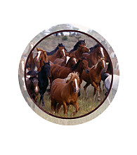Thirstystone® Horse Collage 4-Pack Coasters