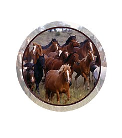 Thirstystone® Set of Four Horse Collage Coasters