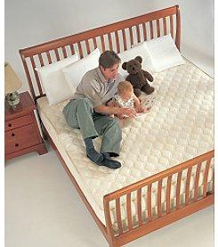InnerSpace® Sleep Luxury Memory Foam Mattress with Teflon®