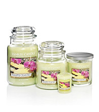 Yankee Candle® Housewarmer® - Pineapple Cilantro