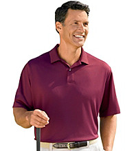 Reebok® Men's Big & Tall Golf Play Dry® Polo