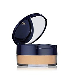 Estee Lauder Double Wear Mineral Rich Loose Powder Makeup