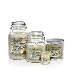 Yankee Candle® Housewarmer® Candle - Sage & Citrus