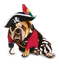 Zelda Wisdom - Pirate Dog Costume