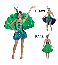 Peacock Adult Costume