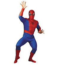 Spider-Man® Comic Adult Costume