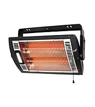 Comfort Zone™ Ceiling Mounted Quartz Heater With Light
