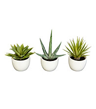 Nearly Natural® Southwest Collection (Set of 3)