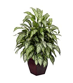 Nearly Natural® Silver Queen with Decorative Planter Silk Plant