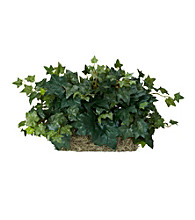 Nearly Natural® Ivy Ledge Plant (Set on Foam) Silk Plant