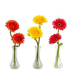 Nearly Natural® Set of Three Gerber Daisies with Bud Vase