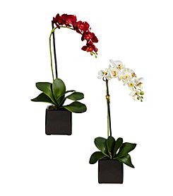 Nearly Natural® Set of Two Phaleanopsis Orchid with Black Vase Silk Arrangement