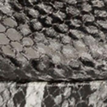 Black Snake Print