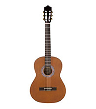 Archer AC10 Classical Nylon String Guitar