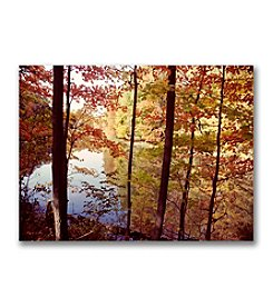 "Trademark Fine Art ""A Secret Pond"" by Kurt Shaffer Gallery-Wrapped Canvas"