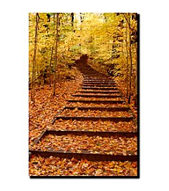 """Fall Stairway"" by Kurt Shaffer Gallery-Wrapped Canvas"