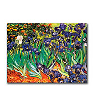 Irises at Saint-Remy by Vincent van Gogh Canvas Art