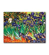 Trademark Fine Art Irises at Saint-Remy by Vincent van Gogh Canvas Art