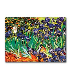 Trademark Fine Art Irises at Saint-Remy by Vincent van Gogh Canvas Art