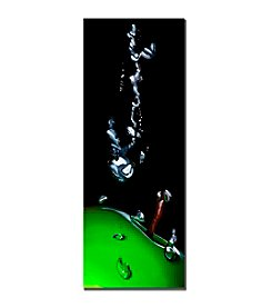 "Trademark Fine Art ""Granny Splash"" by Roderick Stevens Canvas Art"