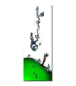 Trademark Fine Art Roderick Stevens Granny Splash II Canvas Art