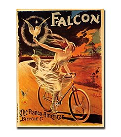 "Trademark Fine Art ""Falcon"" by Pal-Framed Canvas Art"