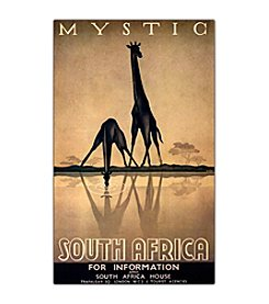 "Trademark Fine Art ""Mystic South Africa"" by Gayle Ullman Framed Canvas Art"