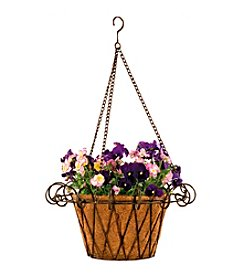 Metal Flower Basket with Coco Liner
