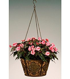 Metal Hanging Basket with Diamond Shaped Accents and Coco Liner