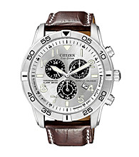 Citizen® Eco-Drive Mens Perpetual Calendar Watch