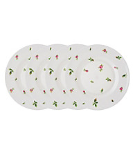 Royal Albert® New Country Roses White Modern Casual Set of 4 Salad Plates