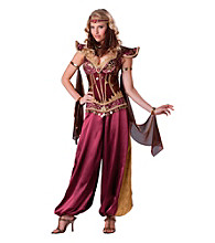 Desert Jewel Adult Costume
