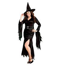 Gothic Witch Adult Plus Costume
